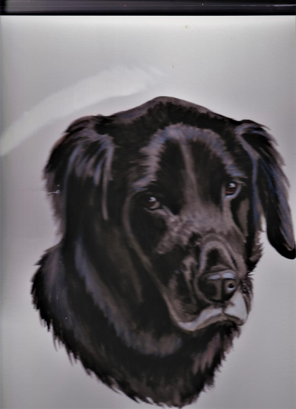 Max Yeager profile image 1