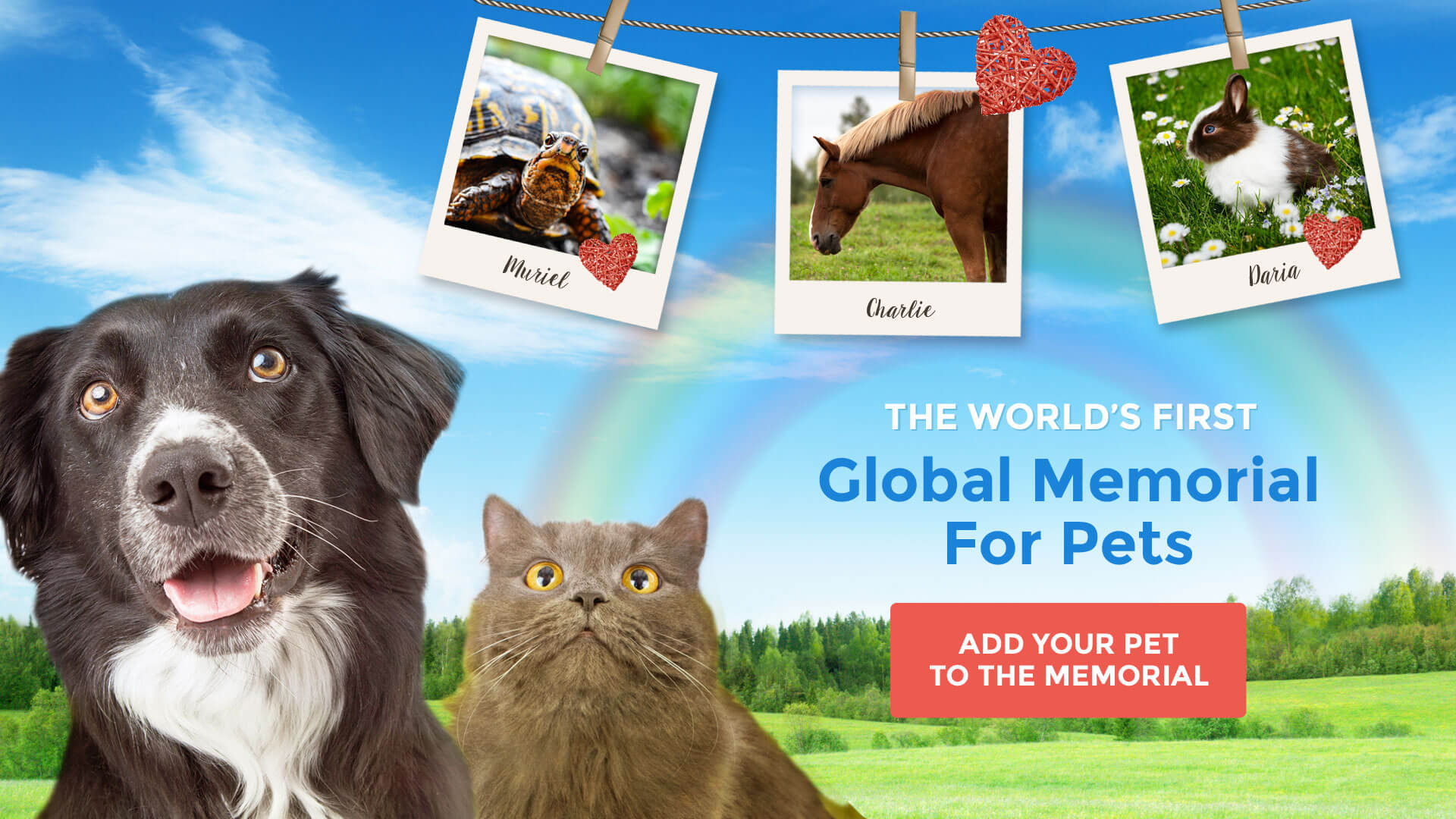 The world's first Global Memorial For Pets - add your pet to the memorial!