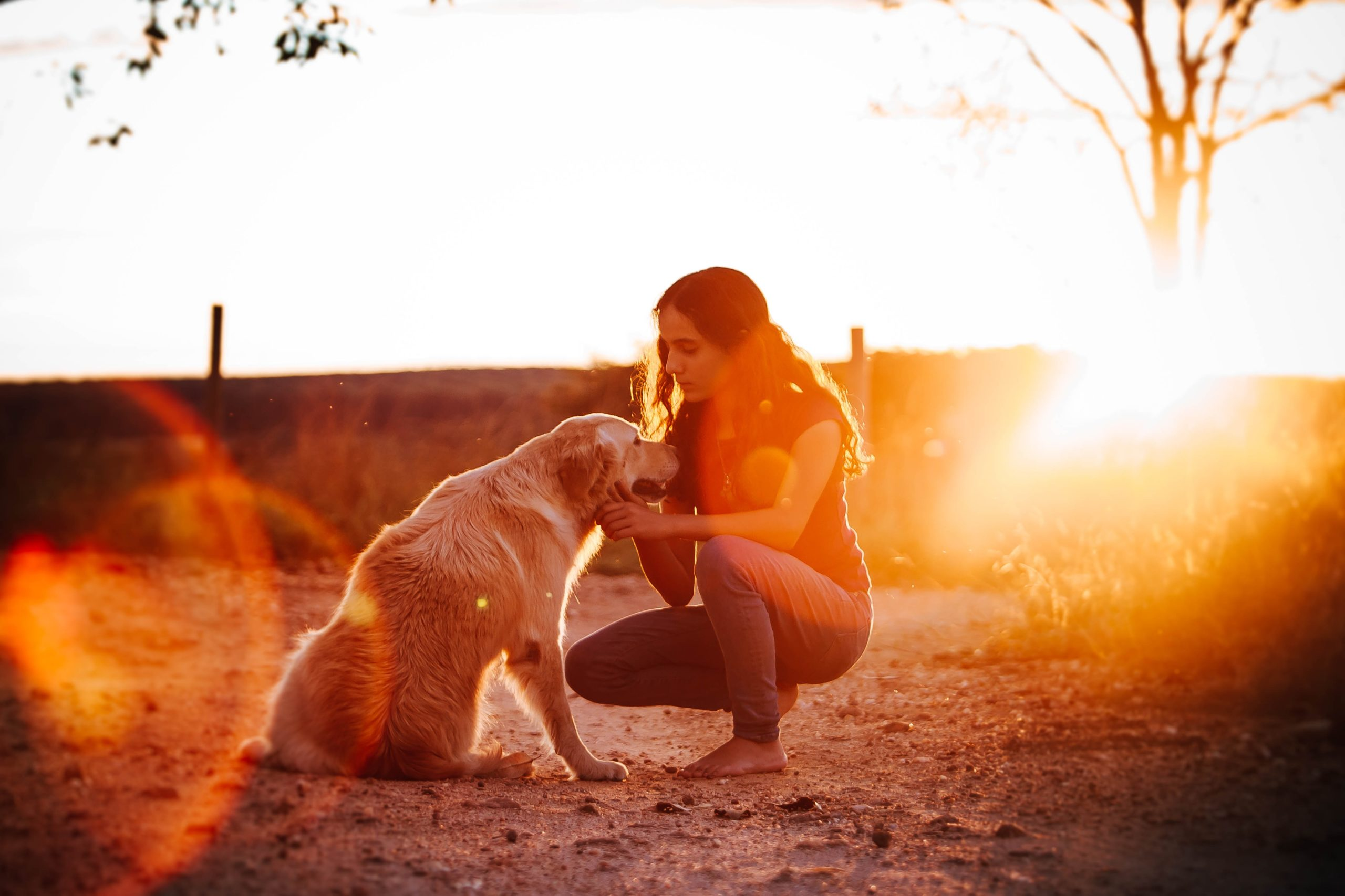 6 Ways to Help a Friend Whose Pet Died 1